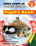 First Steps in Science: Year 6 Pupil's Book
